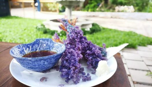 Pantone Plates 2018 – Ultra Violet dishes in Bangkok