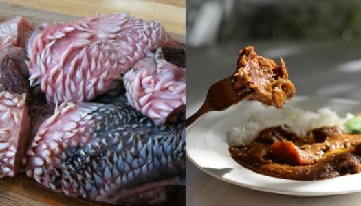 Bangkok Blogger Gets Lippy with Beef Lip Stews| Bangkok Foodies